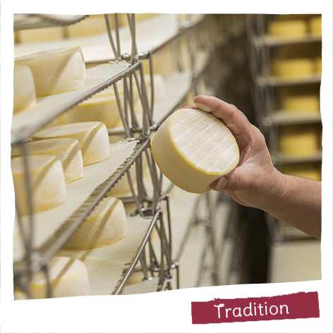 Preserving our French cheese-making heritage is really important to us: 5 cheese-making dairies, 7 regional specialities, 5 AOP (protected designation of origin) cheeses.
